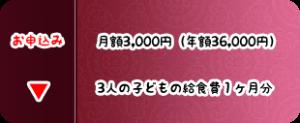 月3000